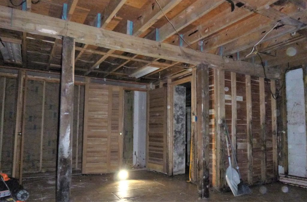 Mold Removal in Wyalusing, Pennsylvania (4178)
