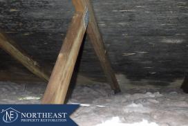 Northeast Property Restoration