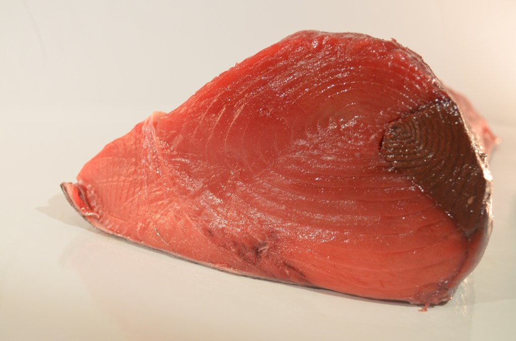 Tuna - Bluefin