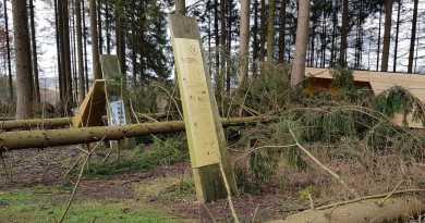 Sturmschäden: Harzhorn bleibt erstmal geschlossen