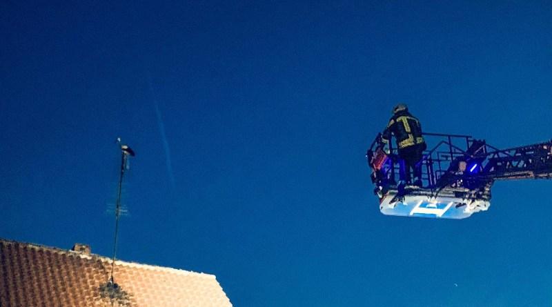 Feuerwehr lässt Storch bei Stöckheim fliegen