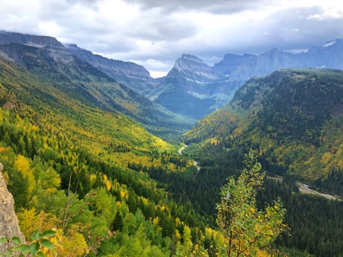 Fall Colors Glacier National Park Montana