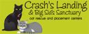 crashs-landing