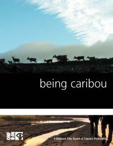 Being Caribou screening @ Schaible Auditorium @ UAF