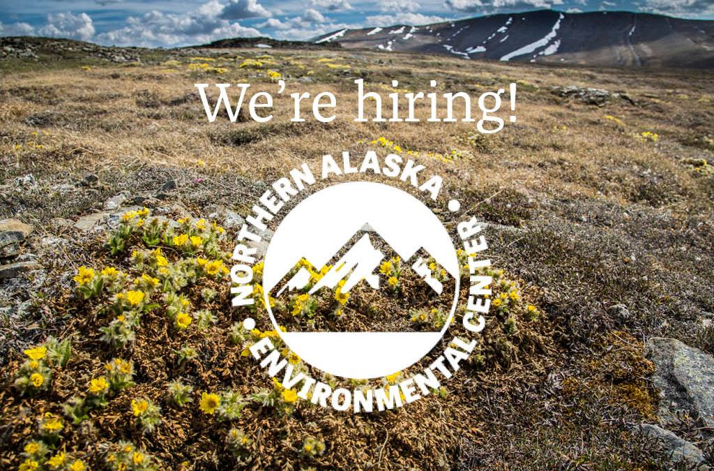 The Northern Center is hiring!