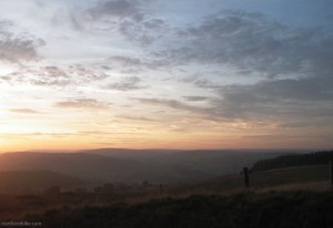 Swaledale from Downholme Moor