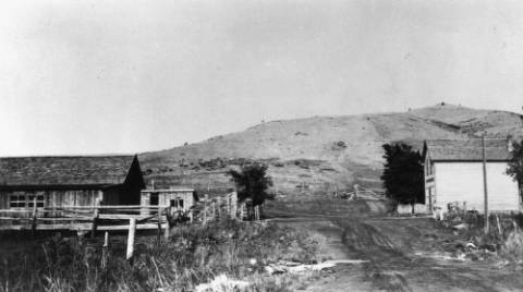 """Street scene in Stout, Colorado . The text on the library file states, """"Street scene in Stout, Colorado, horse stalls in left foreground, chicken house in the back, part of Wather Ranch."""" (Call # X-13705)"""