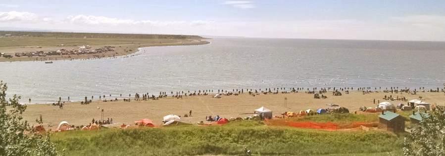Dipnetting for Alaskan Salmon