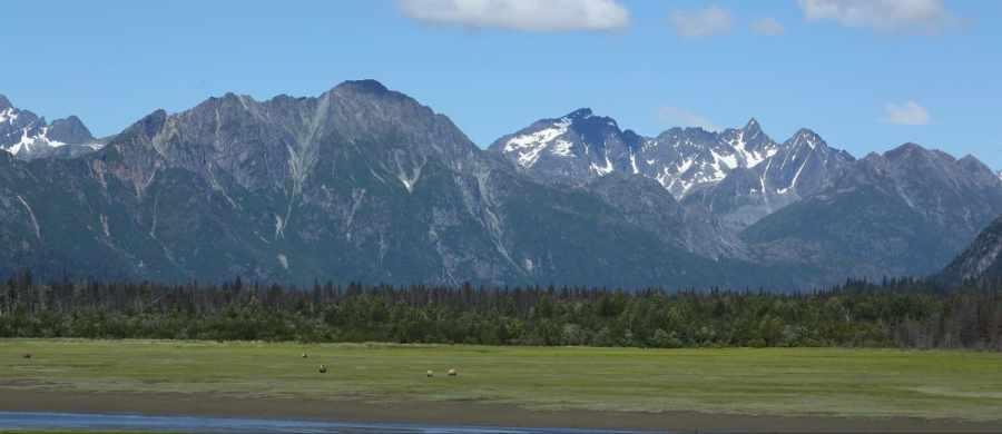 July 2017 Alaska Plan Update