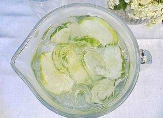 Elderflower Gin Cooler
