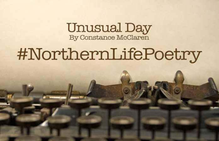 poetry unusual day