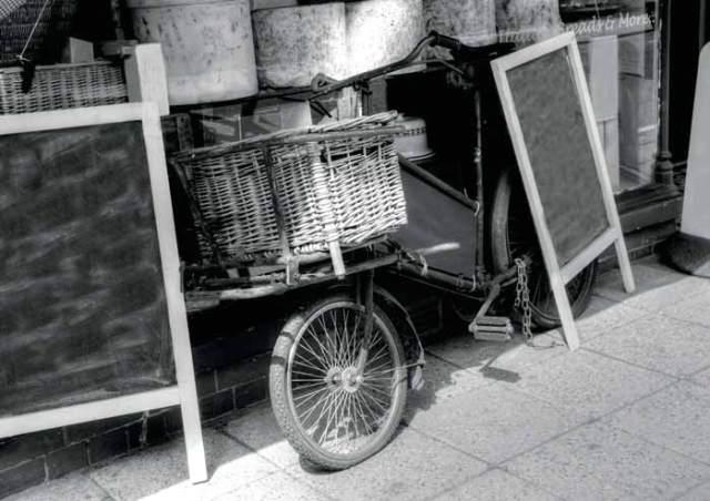 Priestly Bike