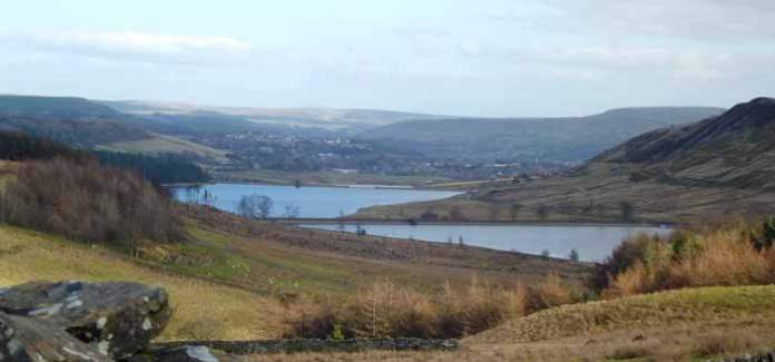 Hazel Valley