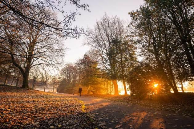 Harold Park, Bradford morning by Dave Zdanowicz
