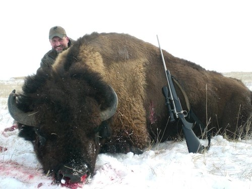 south dakota trophy buffalo hunts