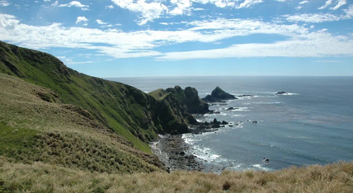 A ridge covered with green and brown grass is in the foreground and it curves around to the left and out into the distance. on the right is the ocean. The sky is blue with white clouds.