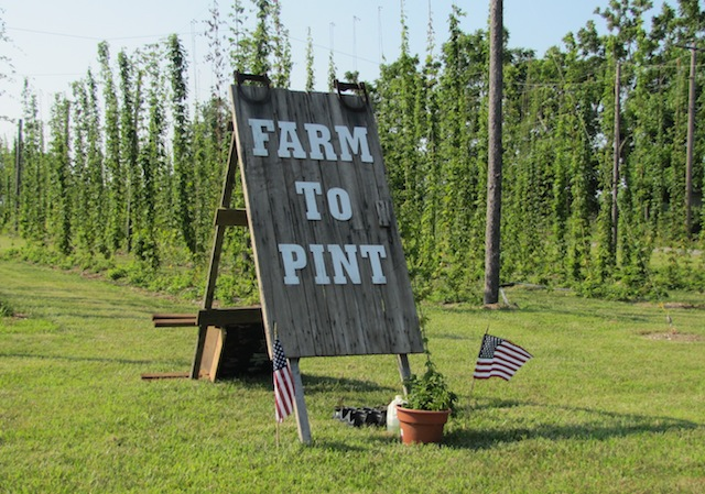 Hops kit from Farm to Pint