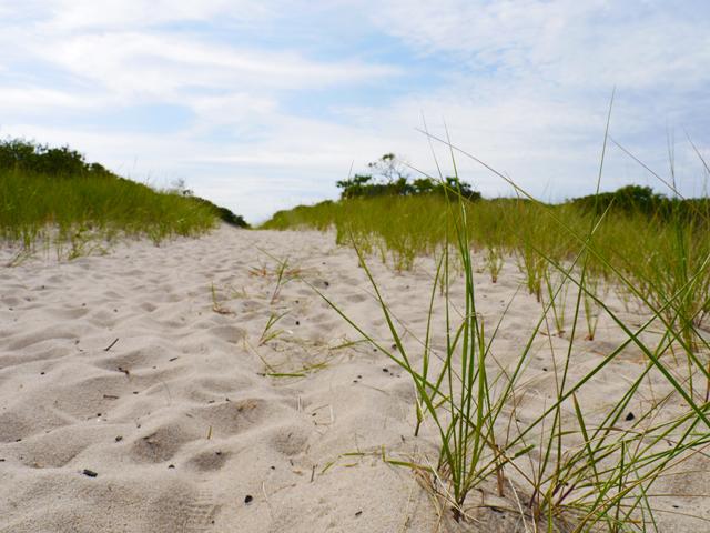 Sound-View-Dunes-Park