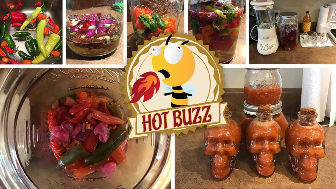 Hot Buzz Fermented Pepper Sauce V1