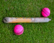 Symbols of cricket! Stumps... which other sport has bits of wood that play such an important part??