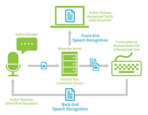 Winscribe Speech Recognition  Northland Business Systems
