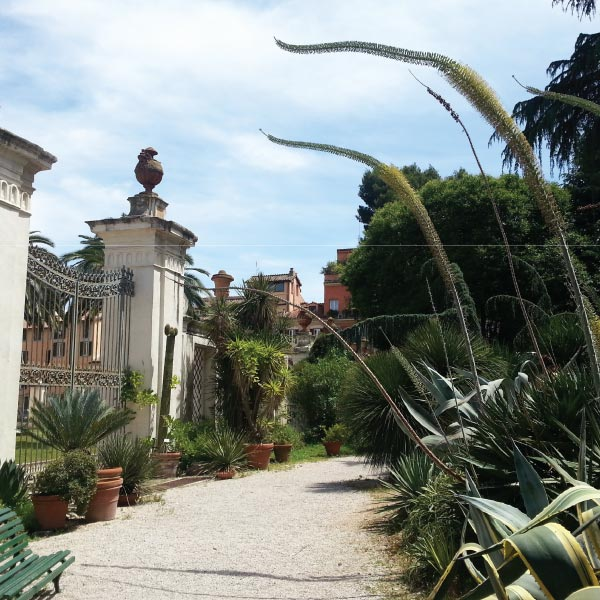 A Tour Around the Rome Botanical Gardens