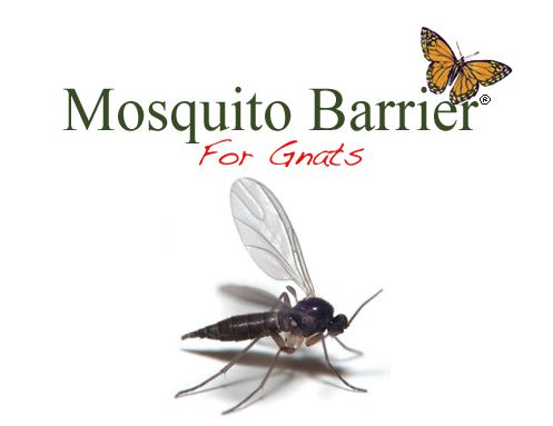 Stop Gnats from Driving You Crazy with Mosquito Barrier