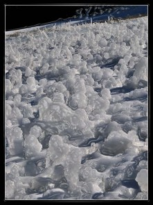 Snow & Ice sculpture