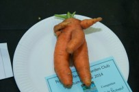 Entry into most humorous vegetable