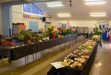hall ready to be judged small