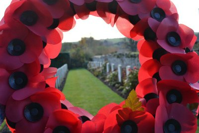 poppies-remembrance