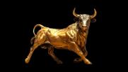 Gold Bull Part II