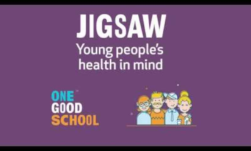 Jigsaw: Parents/Caregivers Survey