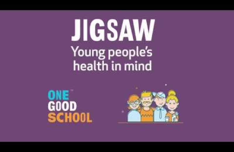 Jigsaw: Parents/Caregivers Survey