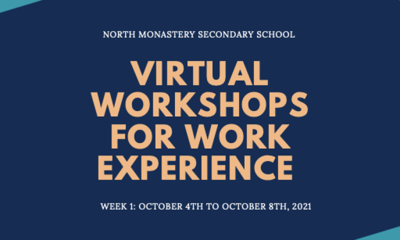TY: Virtual Workshops for Work Experience