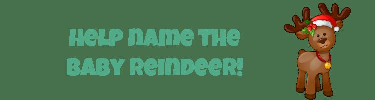 Name the Baby Reindeer
