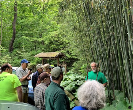 Michael Veracka leads Bamboo Walk at Humes Stroll Garden, 2020