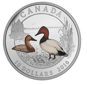 1/2 oz. Fine Silver Coloured Coin – Ducks of Canada: Canvasback – Mintage: 10,000 (2016)