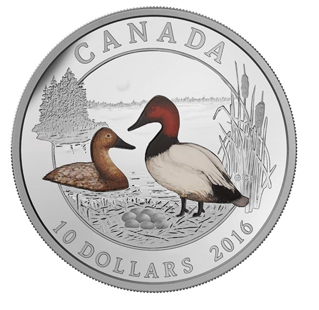 1/2 oz. Fine Silver Coloured Coin – Ducks of Canada: Canvasback – Mintage: 10,000 (2016)