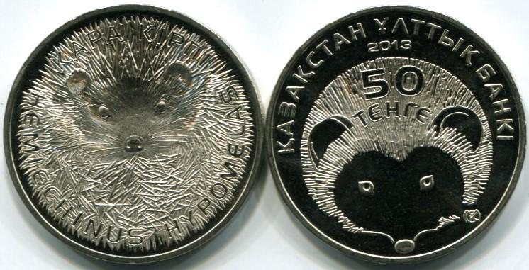 Kazakhstan Hedgehog