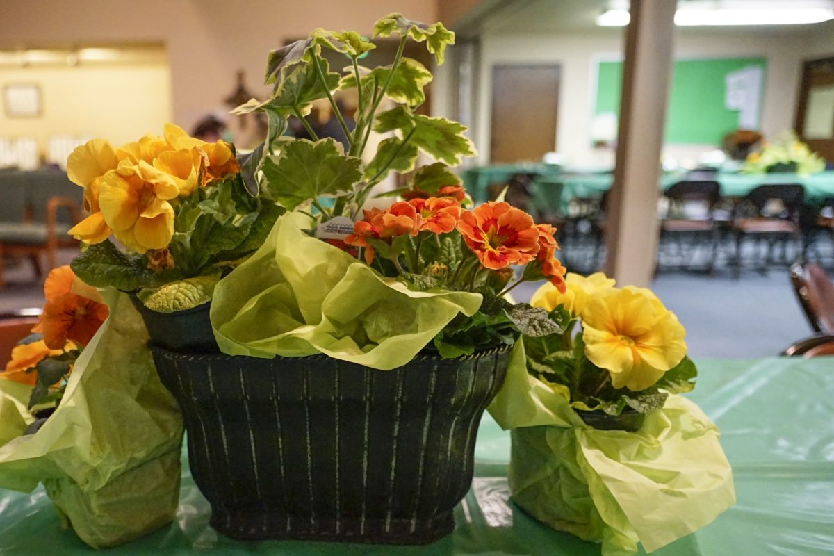 NUCC St PAtty's Day dinner flowers