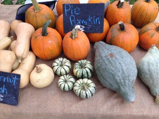 table of gourds