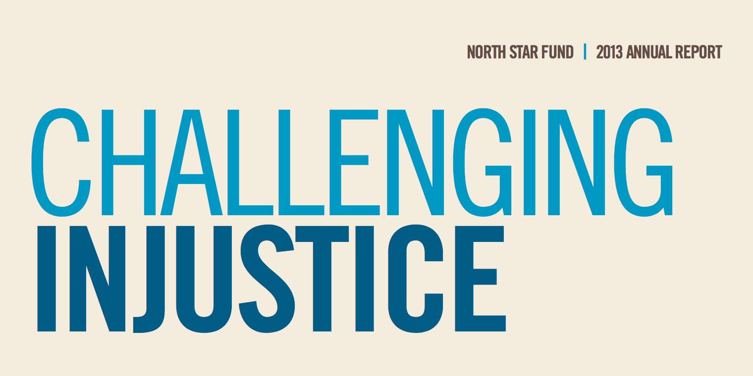 North Star Fund 2013 Annual Report Cover
