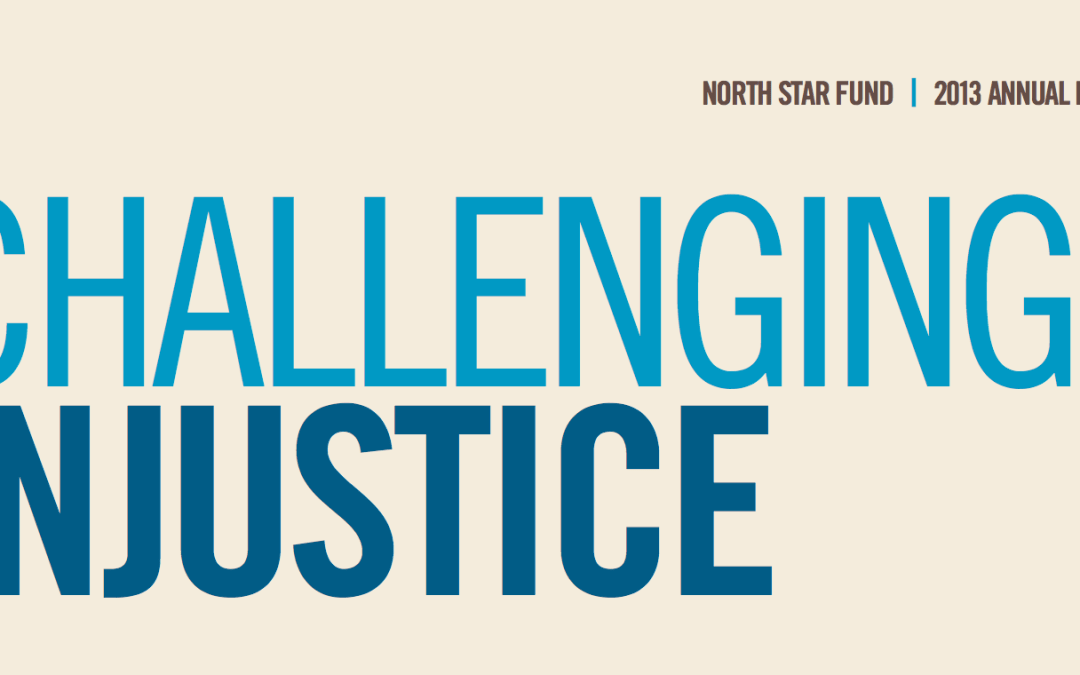 Challenging Injustice: Read Our 2013 Annual Report
