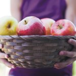 The Importance of Being an Apple
