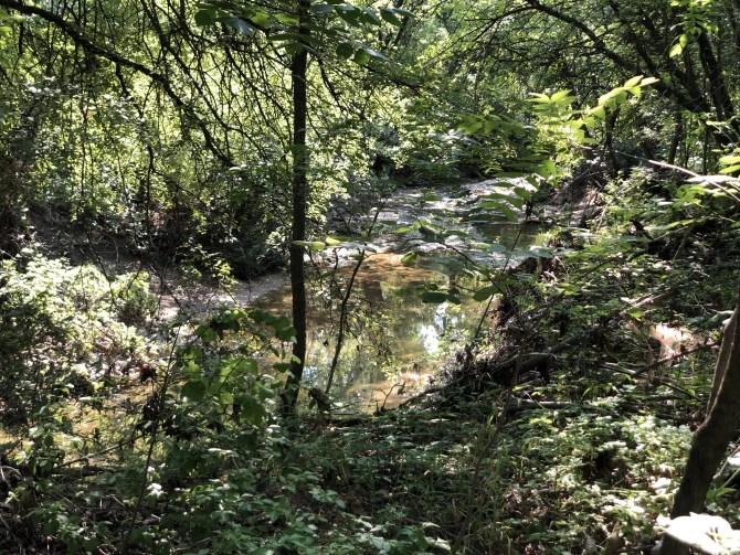 Trestle Trail at Arbor Hills
