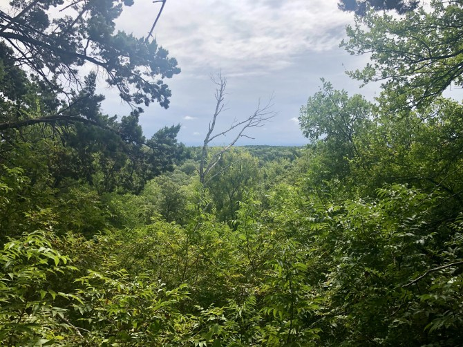 Dogwood Canyon: View from the West Loop