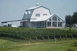 Blue Ostrich Winery