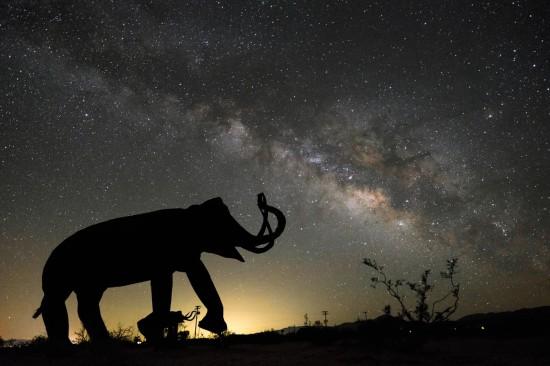 Galleta Meadows Estate desert sculptures under the Milky Way, Borrego Springs, California, USA on northtosouth.us