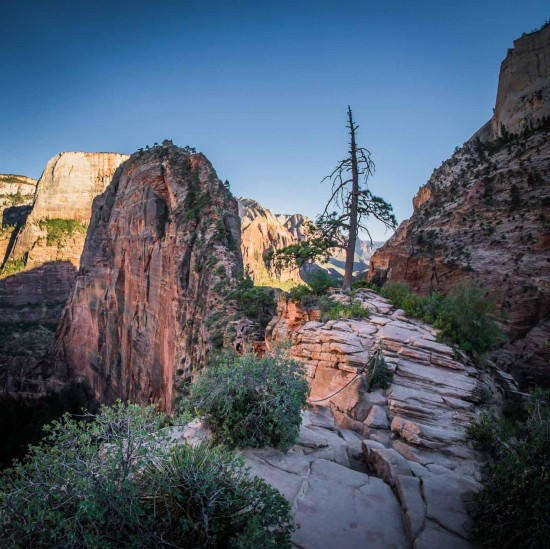 Angels Landing hike, Zion National Park, Utah, USA on northtosouth.us